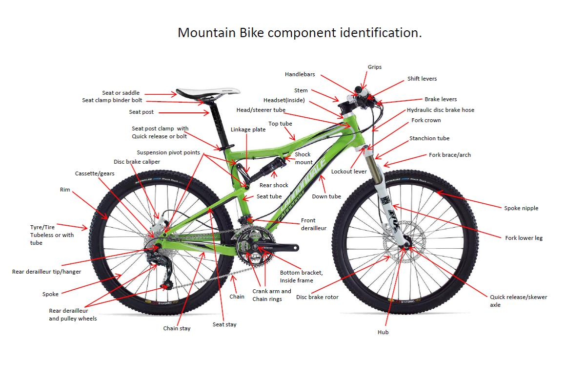 Things To Know About Your Mountain Bike Parts Bike Repair Shopbike